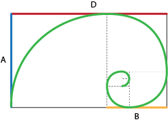 Spirale aureo e rettangolo aureo